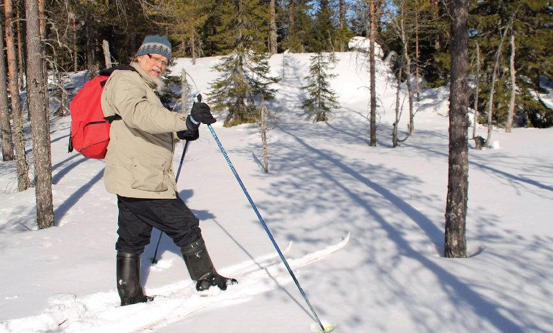 Markku Aho hiihtämässä metsässä
